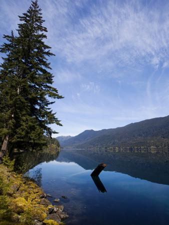 A View of Lake Crescent on a Sunny Afternoon