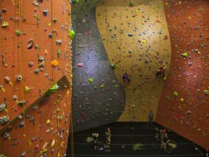 Climbers Ascend a Rock Wall at a Climbing Gym in Seattle by Michael Hanson