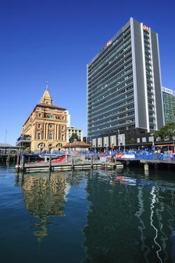 Harbour of Auckland, North Island, New Zealand, Pacific by Michael