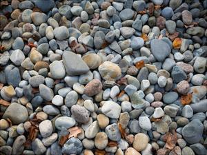 Pebbles, Little Hunters Beach by Michael Hudson