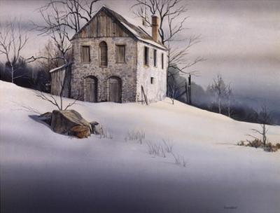 Gentle Snow by Michael Humphries