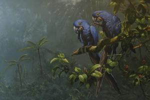 Blue Birds by Michael Jackson