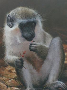 Monkey 2 by Michael Jackson