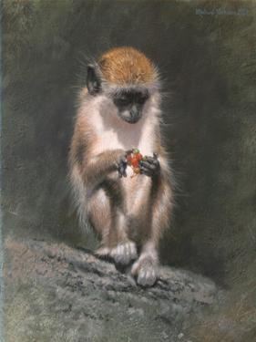 Monkey and Berries by Michael Jackson
