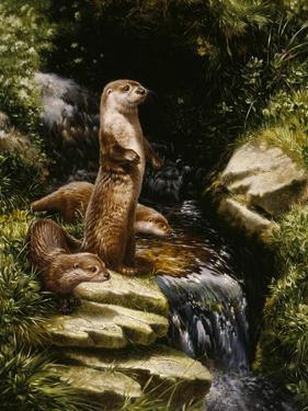 Otters by Michael Jackson
