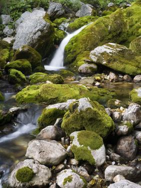 Soca, waterfall close source of the So?a, Triglav national park, Julian Alps, Slovenia by Michael Jaeschke