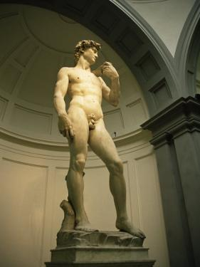 Michelangelo's Statue of David, Florence, Tuscany, Italy by Michael Jenner