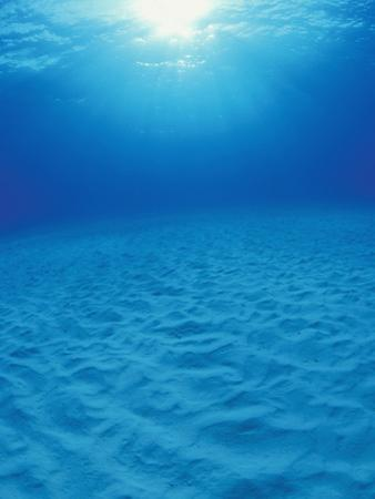 Underwater Sand Plain Lit by the Sun Through Clear Blue Water, Bahamas