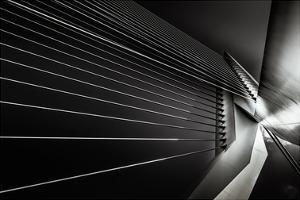 Rotterdam - Cable style by Michael Jurek
