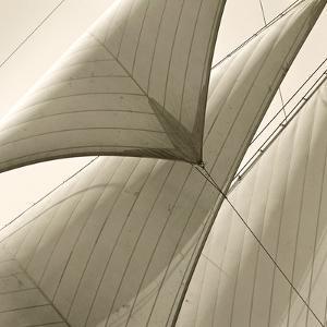Head Sails of a Schooner by Michael Kahn