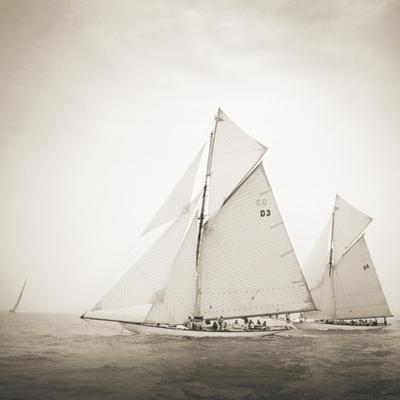 Tuiga and Moonbeam by Michael Kahn
