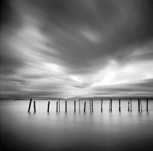 Twenty Sticks, Kohoku by Michael Kenna