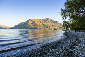 Late Afternoon Light over the Shores of Lake Wakatipu by Michael
