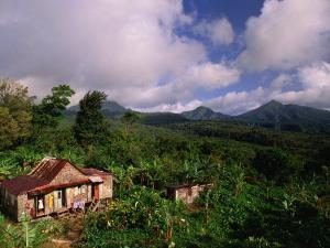 Overhead of House in Rainforest, Roseau Valley, Dominica by Michael Lawrence