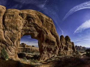 Pine Tree Arch by Michael Leggero