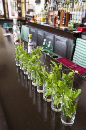 Glasses on the Bar with Ingredients for Mojitos at the Hotel Nacional in Havana Viejo by Michael Lewis