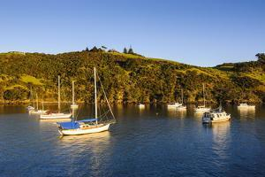 Little Sailing Boats in Matiata Bay on Waiheke Island by Michael