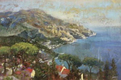 Coastal Reflection by Michael Longo