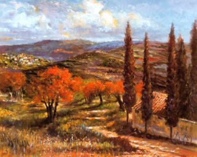 Montepulciano by Michael Longo