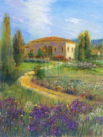 Morning in Spain II by Michael Longo