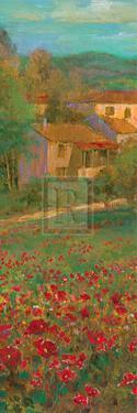 Provencal Village VI by Michael Longo