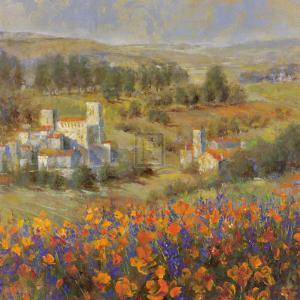 Provencal Village VII by Michael Longo