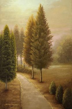 Auburn I by Michael Marcon