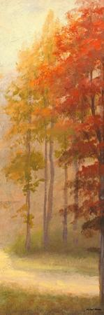 Fall Trees I by Michael Marcon