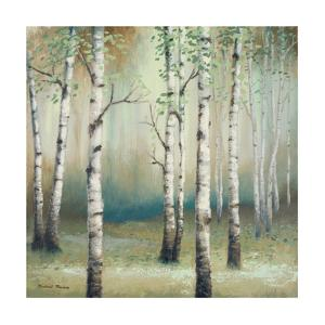 Late September Birch II by Michael Marcon