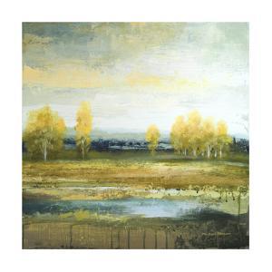 Marsh Lands II by Michael Marcon