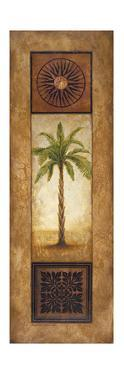 Sago Palm by Michael Marcon