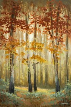 Woodland Glow I by Michael Marcon