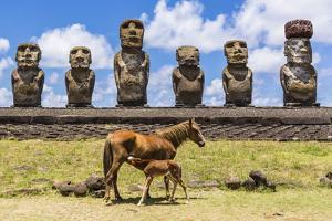 Mare Nursing Foal at the 15 Moai Restored Ceremonial Site of Ahu Tongariki by Michael