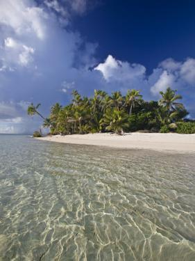 Beautiful, Tropical Beach Scene of Palm Trees Sand and Water by Michael Melford