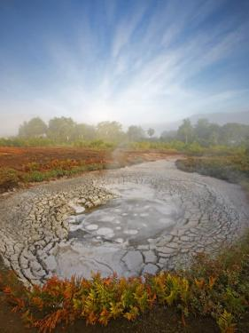 Ferns surrounding a steaming mud pot in Uzon Caldera by Michael Melford