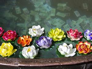 Flowers Floating in a Wishing Well by Michael Melford