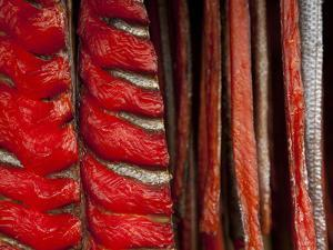 King Salmon Fish Fillets Hanging in Smokehouse on the Nushagak River by Michael Melford