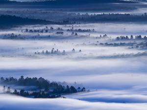 Morning Fog Hangs over Saranac Lake Canoe Area by Michael Melford