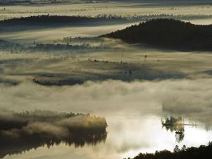 Morning Fog Shrouds the Surface of Bear Pond by Michael Melford