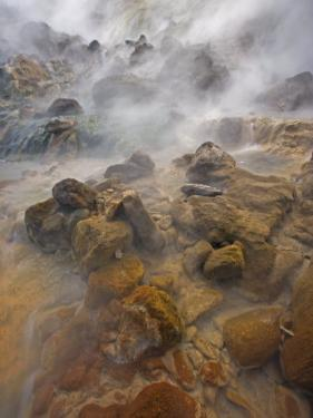 Steaming water flows over rocks stained by algae and bacteria by Michael Melford