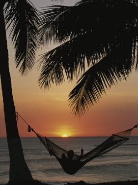 Sunset on Beach with Silhouetted Hammock and Palms, Costa Rica by Michael Melford