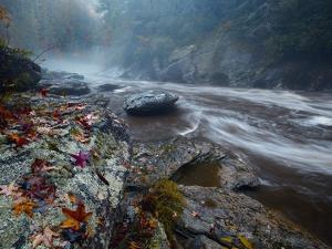 The Chattooga River in Sumter National Forest by Michael Melford