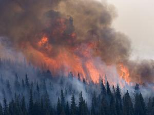 The Red Eagle wildfire of 2006 by Michael Melford