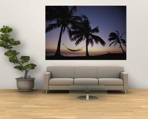 Twilight View of Beach with Hammock and Palms, Costa Rica by Michael Melford