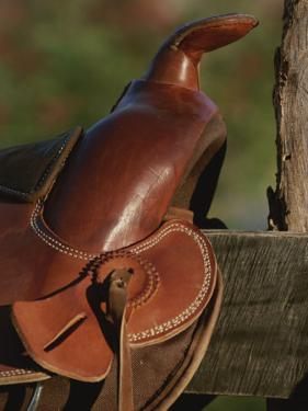 Western Riding Saddle by Michael Melford