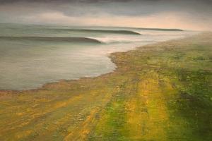 California II: Fertile Ground by Michael Mote