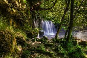 The Secret Waterfall by Michael Murphy