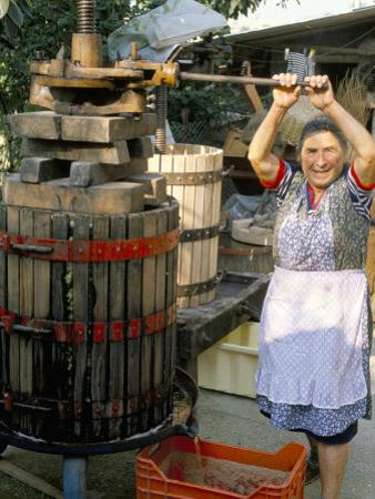 A Local Winemaker Pressing Her Grapes at the Cantina, Torano Nuovo, Abruzzi, Italy by Michael Newton