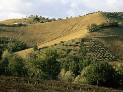 Landscape Near Chieti, Abruzzo, Italy