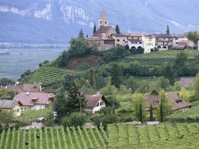 Traminer, the Town That Gave Its Name to Gewurztraminer Wine, Bolzano, Alto Adige, Italy